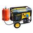 Imagen de Generador dual Gas-Gasolina Ayerbe Energen 6500 5500W